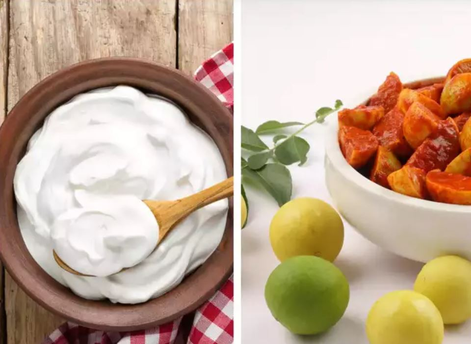 Benefits of yogurt and fermented foods
