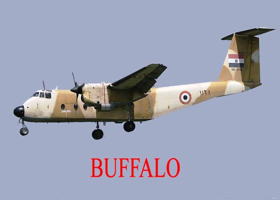 الطائرة بافلو