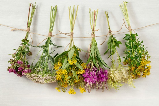 Dried Flowers Top 2021 Decor Trends (1)