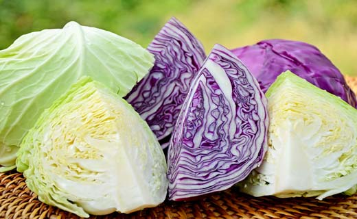 6.Benefits-of-cabbage