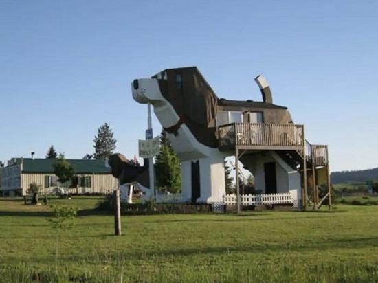 dog shaped house