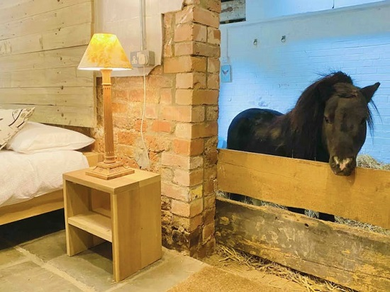 Basil's stable
