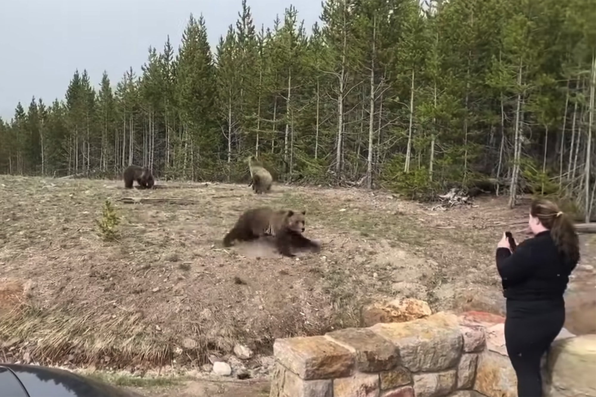 Picture taken of the lady while approaching the bear