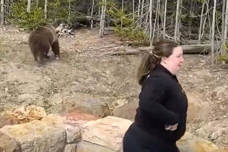 The lady is running from the bear