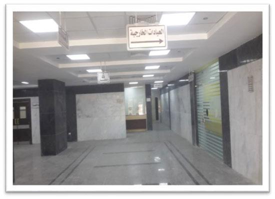 مستشفى حورس (2)
