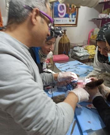 424126-جانب-من-العملية-الجراحية-لقط