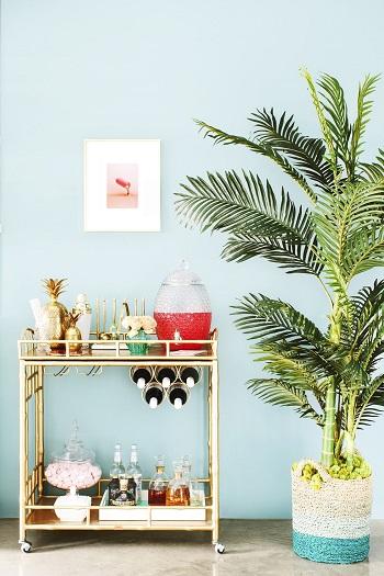 ديكورات غرفة معيشة بالنباتات