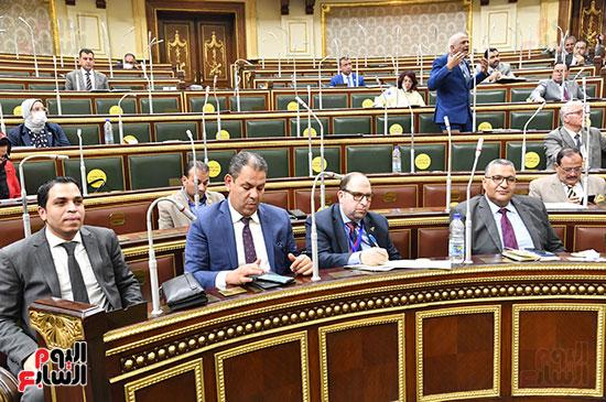 الجلسة العامة لمجلس النواب (55)