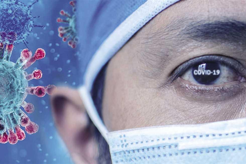 كيف ينتقل فيروس نيباه الى البشر ؟