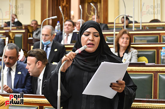الجلسة العامة لمجلس النواب (19)