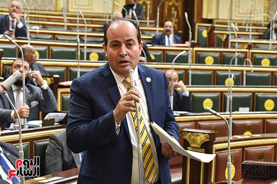 الجلسة العامة لمجلس النواب (28)
