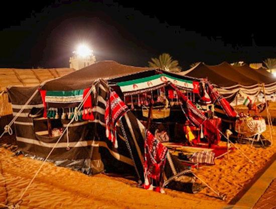 مهرجان الشيخ زايد للتراث (24)