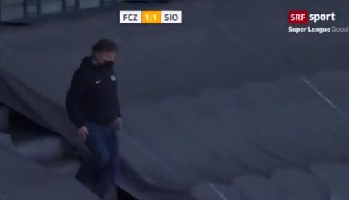 رئيس زيورخ يتوجه نحو الكلب