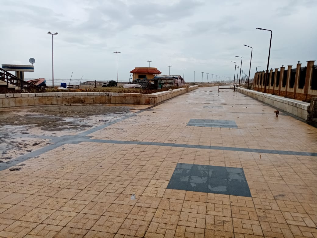 ميناء بورسعيد (4)