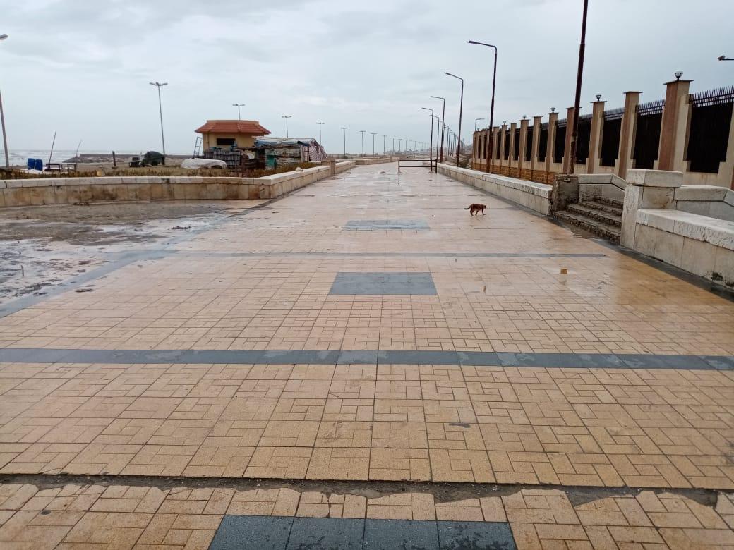 ميناء بورسعيد (2)