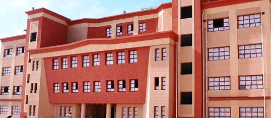 المدرسة الدولية الحكومية بكفر الشيخ