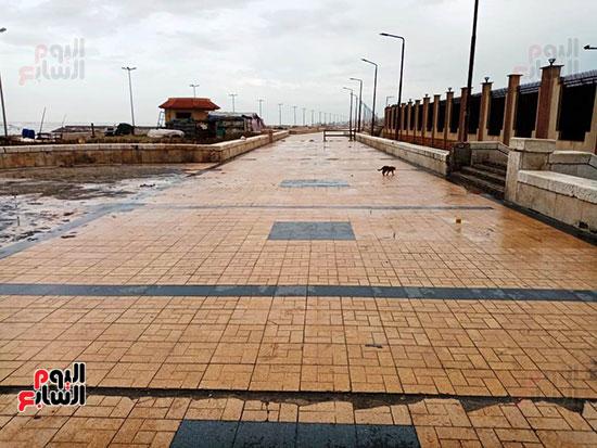 أمطار غزيرة وانخفاض شديد-فى درجة الحرارة ببورسعيد (1)