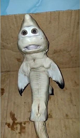 صياد إندونيسى يعثر على سمكة قرش ذو وجه بشرى (1)