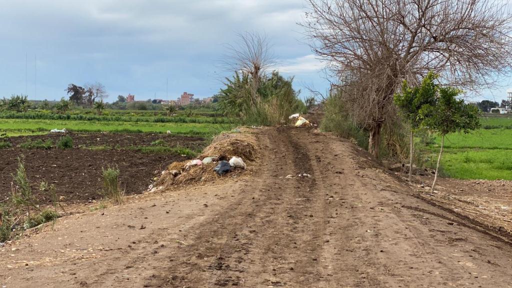 مبادرة حياة كريمة تبدأ فى تطوير قرية كفر الحطبة  (3)