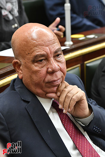جلسة مجلس النواب بحضور وزير الاثار (7)