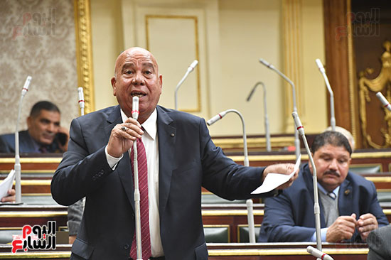 جلسة مجلس النواب بحضور وزير الاثار (15)