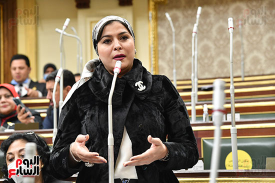 جلسة مجلس النواب بحضور وزير الاثار (23)