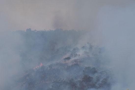 حرائق الغابات تدمر عدة منازل غرب أستراليا (4)