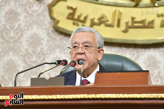 الجلسة العامة لمجلس النواب (3)