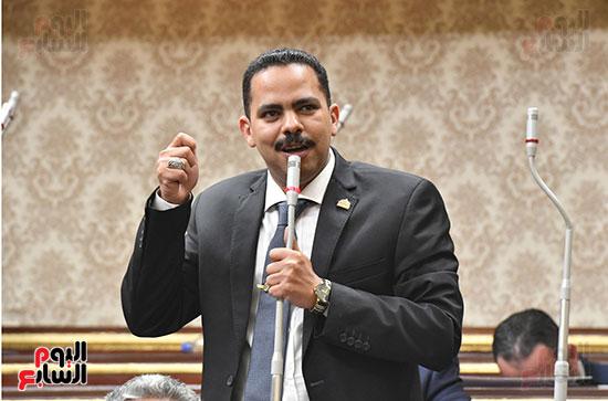 الجلسة العامة لمجلس النواب (49)