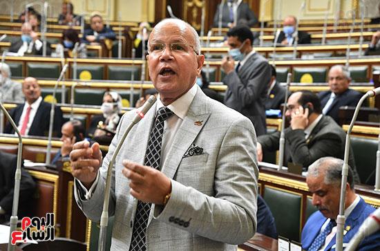 الجلسة العامة لمجلس النواب (42)