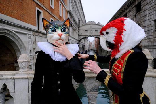 مهرجان البندقية (3)