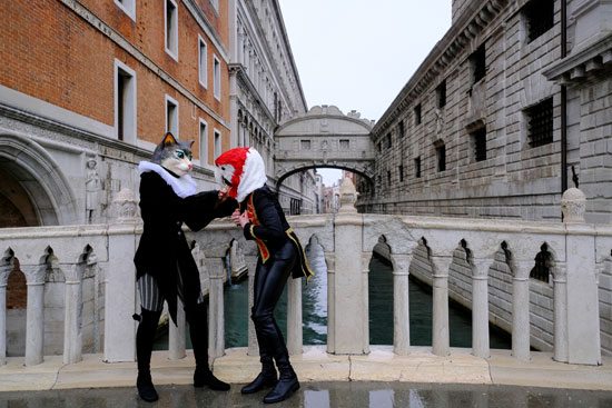 مهرجان البندقية (6)