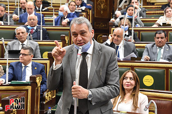 جلسة مجلس النواب (20)