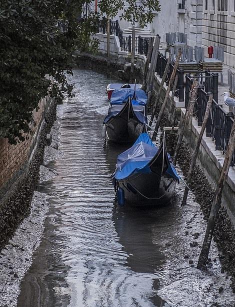 جفاف قنوات مدينة البندقية الشهيرة في إيطاليا (4)