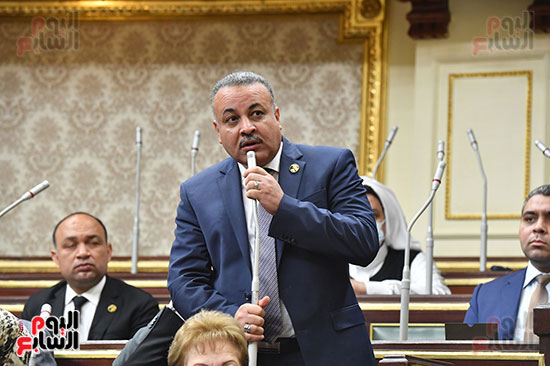 مجلس-النواب-(24)