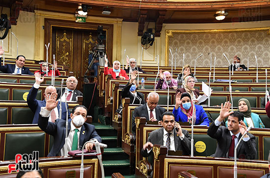 الجلسة العامة لمجلس النواب (20)