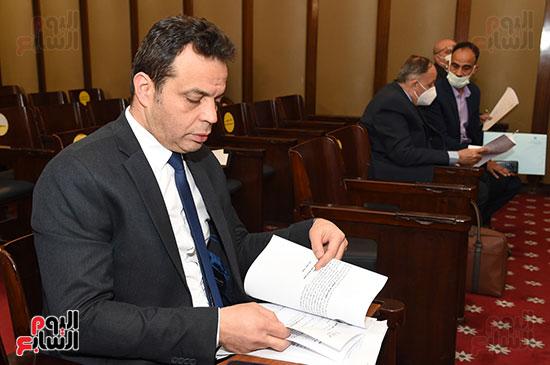 تشريعية النواب (4)