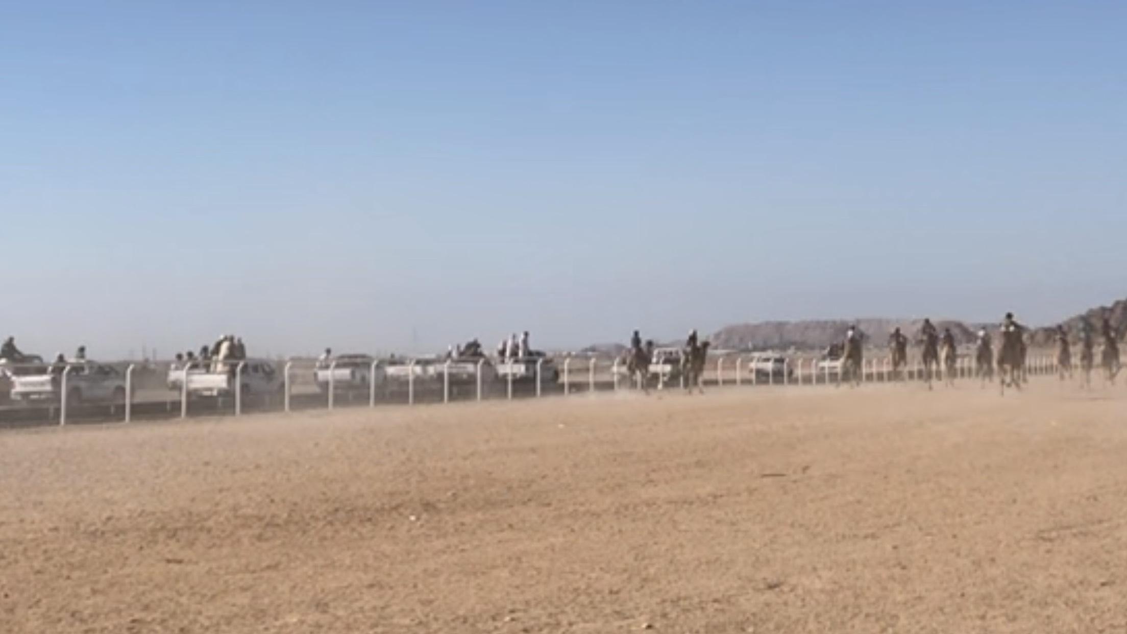 انطلاق سباق الهجن فى شرم الشيخ