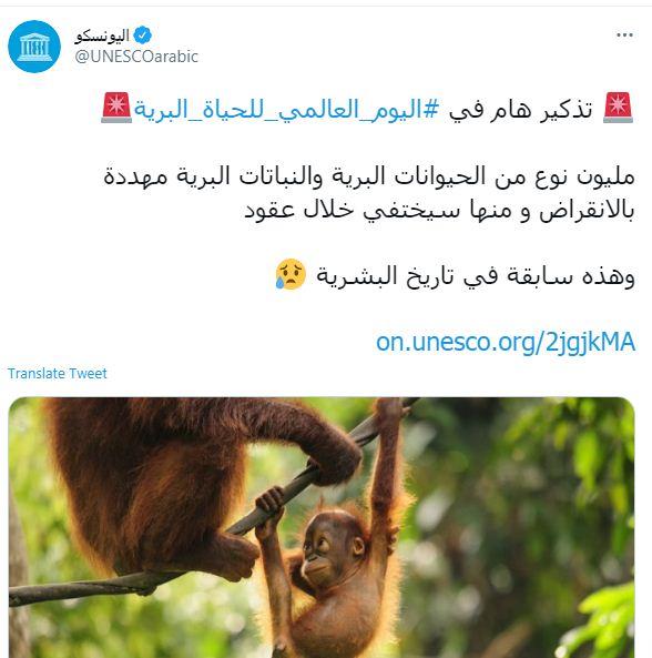حساب اليونسكو على تويتر