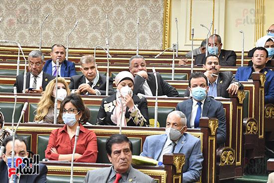مجلس النواب (3)