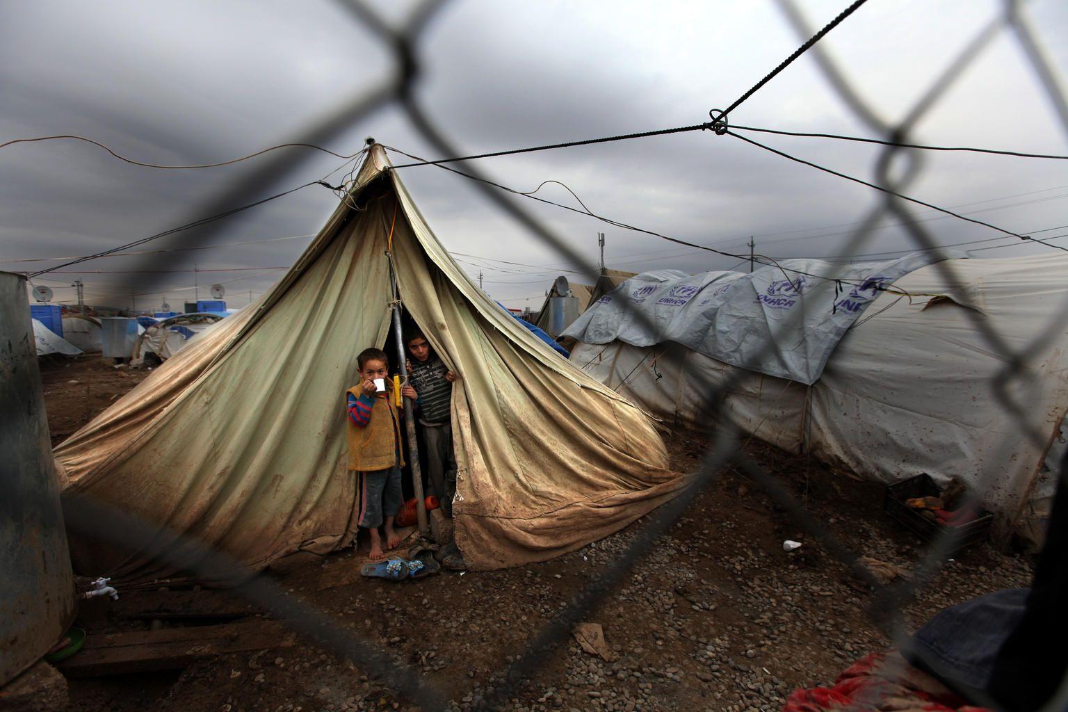 سوريا 2013 (1)