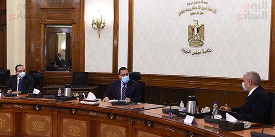 رئيس الوزراء يلتقى الرئيس التنفيذى لمجموعة العربى (1)