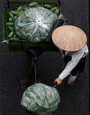 بائع الفاكهة (2)