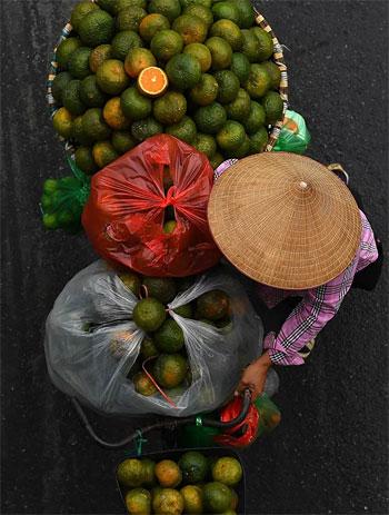 بائع الفاكهة (7)
