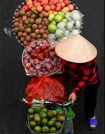 بائع الفاكهة (6)