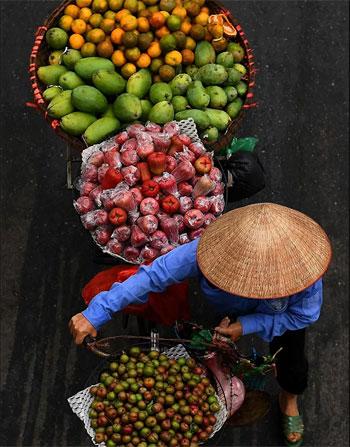 بائع الفاكهة (9)