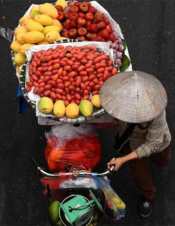 بائع الفاكهة (1)