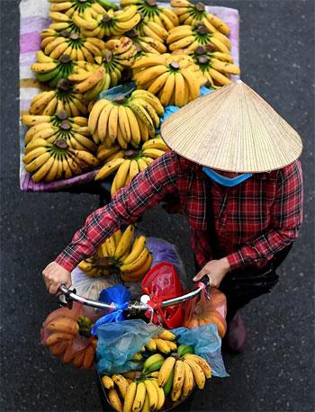 بائع الفاكهة (3)