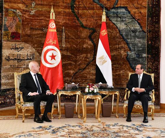 القمة المصرية التونسية (8)