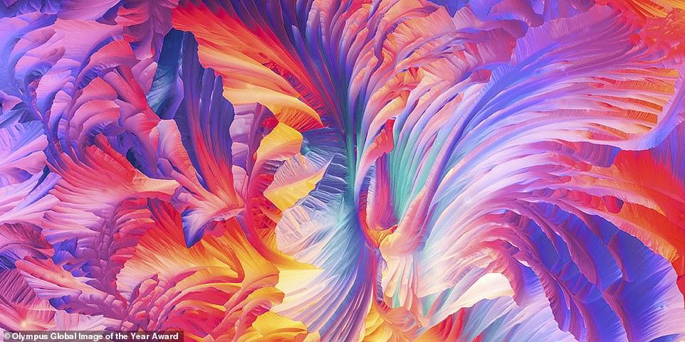 صورة  بانورامية ذات المجهر الضوئي المستقطب الجميل من بلورات الجلوتامين وبيتا ألانين
